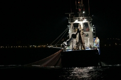 Pesca.Irun-6.jpg
